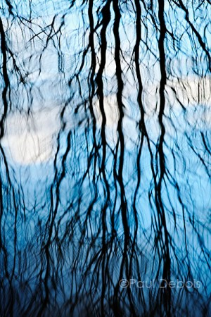 reflections, Grand Union Canal