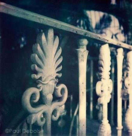 'Palm House 5' Kew Gardens - SX-70 print