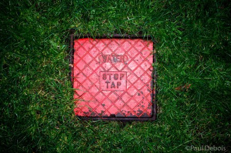 Kew Gardens - stop-plate cover