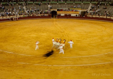 Bullfight, El Puerto de Santa Maria