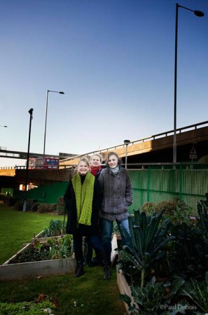 Camilla Phelps, journalist, Tamsin Hope-Thomson and Kate Bradbury, garden journalists and researchers at the BBC allotment, White City