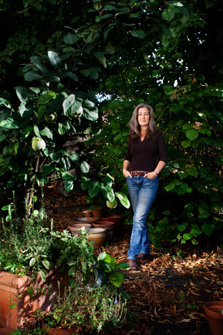 Polly Higgins, environmental lawyer