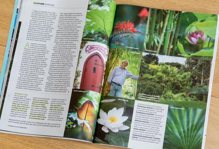 Andrew Brogan's Exotic Garden, Henstead