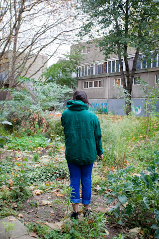 guerrilla gardener at allotment, Urban Forest