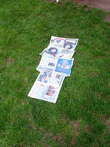 Newspaper bed, Milan