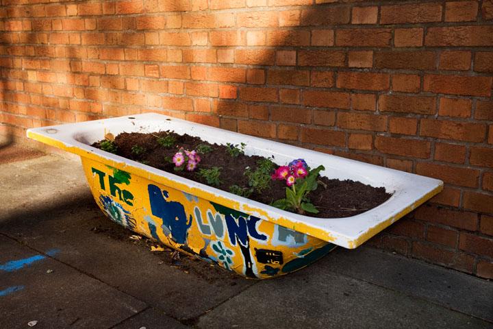 Street planting, Bermondsey