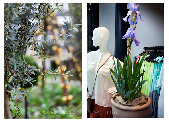 Chelsea Fringe 2012. Left: Oranges and Lemons Garden at St Leonard's, Shoreditch. Right: Pop-up Flower Shop at COS in Brompton Road, London - A collaboration between Clifton Nurseries and COS