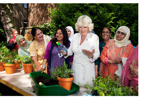 HRH The Duchess of Cornwall at the Geffrye Museum, 30.5.12 - planting up a herb container.