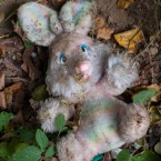 Urban Forest, Elephant and Castle. Lost toy rabbit.