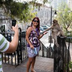 Tourists with Barbary Ape, Gibraltar
