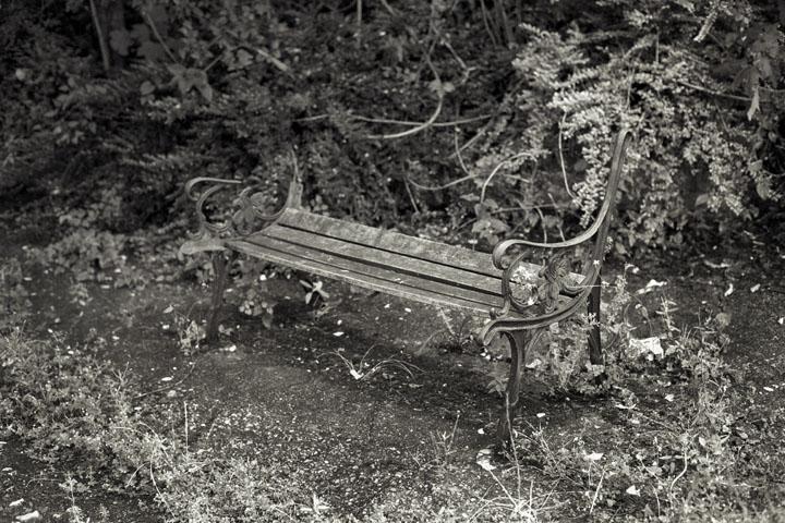 Bench under M4 near Gunnersbury Park, August 2012