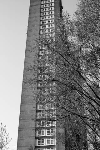 Trellick Tower, 15.11.13