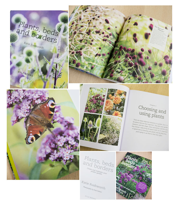 Plants, Beds and Borders with Katie Rushworth